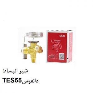 شیر انبساط TES55دانفوس